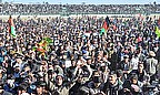 Crowds greet the Afghanistan cricket team