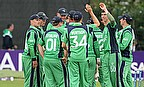 Ireland celebrate a wicket