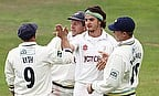 Yorkshire celebrate a wicket
