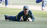 Brad Haddin Hints One-Day International Retirement