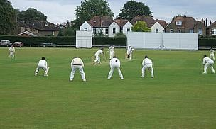 Cricket action shot