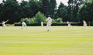 Club cricket action