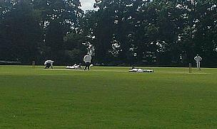 Shot of wasps stopping play with players and umpires taking evasive action at Harrow St Mary's
